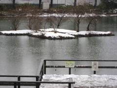 Yokohama_snow2