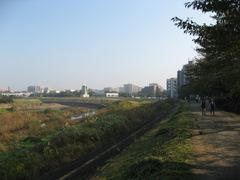 Yokohama5