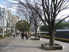 Kishochomae